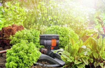Описание схемы внесения удобрения для растений выращиваемых на системах гидропон -
