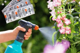 Использование янтарной кислоты в качестве развития растений и регулятора роста.